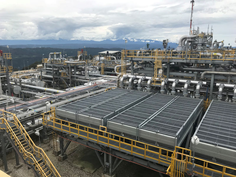 © Reuters. FILE PHOTO: The ExxonMobil Hides Gas Conditioning Plant process area is seen in Papua New Guinea