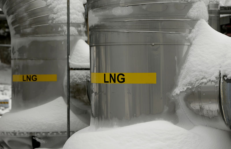 © Reuters. FILE PHOTO: FILE PHOTO: Snow covered transfer lines are seen at the Dominion Cove Point Liquefied Natural Gas terminal in Maryland