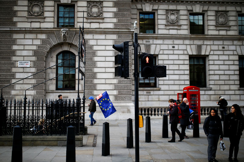 © Reuters. A anti-brexit protester carrying an EU flag walks down Whitehall in London