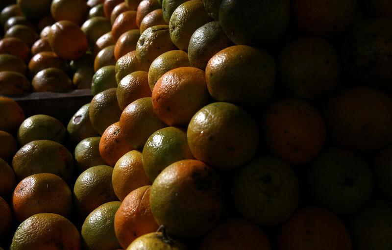 © Reuters. Laranjas em galpão de armazenamento