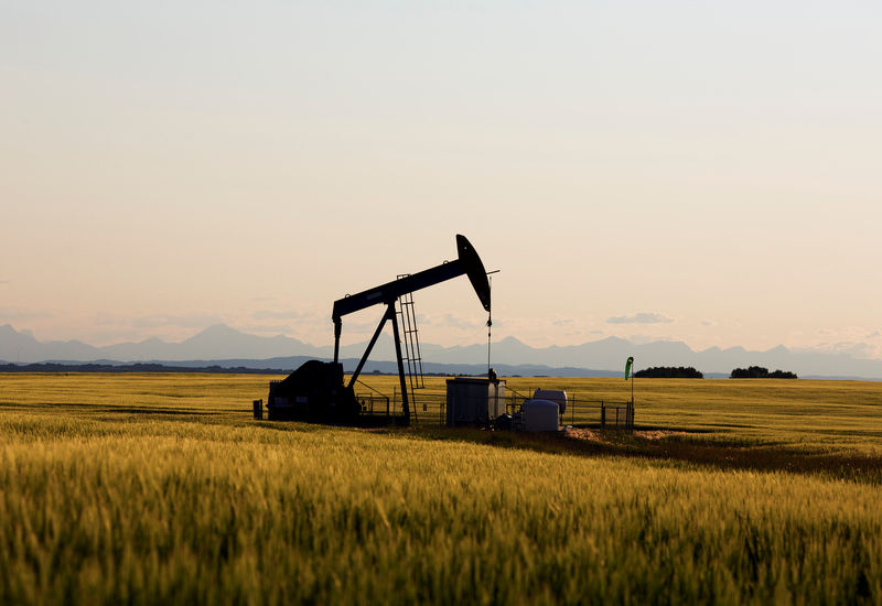© Reuters. FILE PHOTO: An oil pump jack pumps oil in a field near Calgary