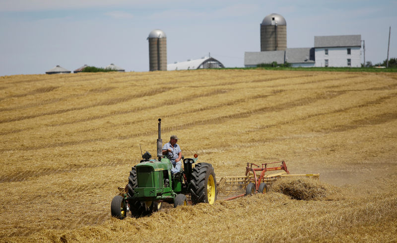 © Reuters. FILE PHOTO: A farmer harvests his field at his farm in Pecatonica
