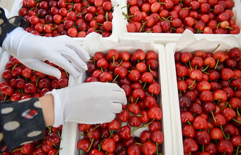 The pits: How China's U.S. tariff jab choked a cherry import boom