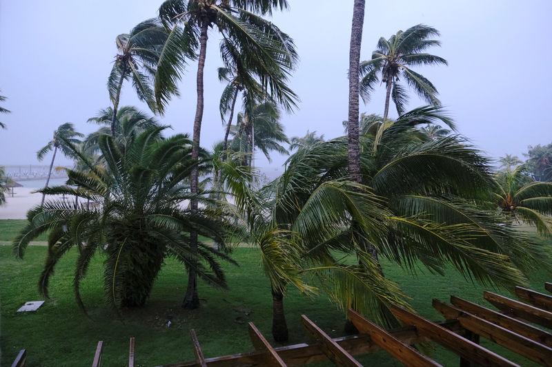 Dorian strikes Bahamas as catastrophic hurricane, parts of Florida evacuate