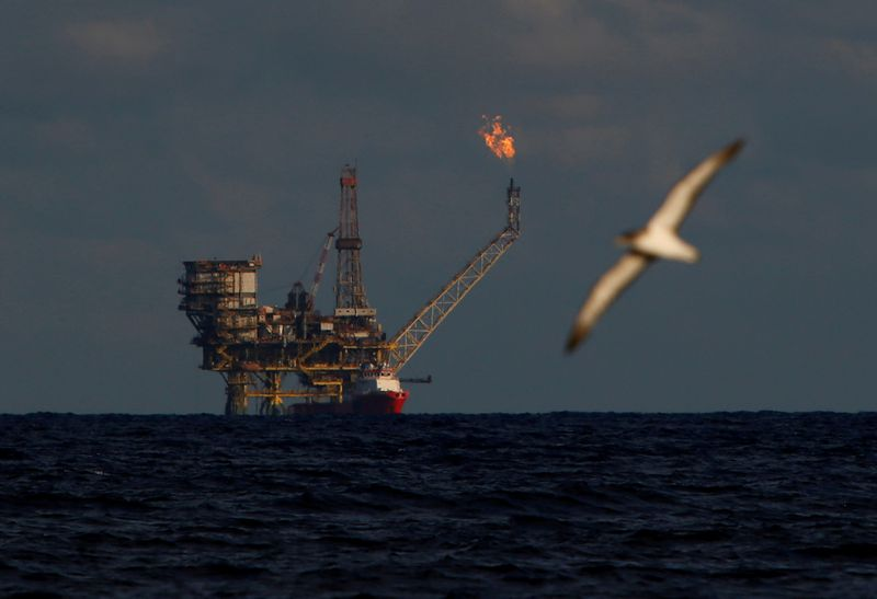 © Reuters. FILE PHOTO: A seagull flies in front of an oil platform in the Bouri Oilfield some 70 nautical miles north of the coast of Libya