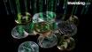 L'Iran pourrait lancer sa crypto-monnaie pour contrer les sanctions US